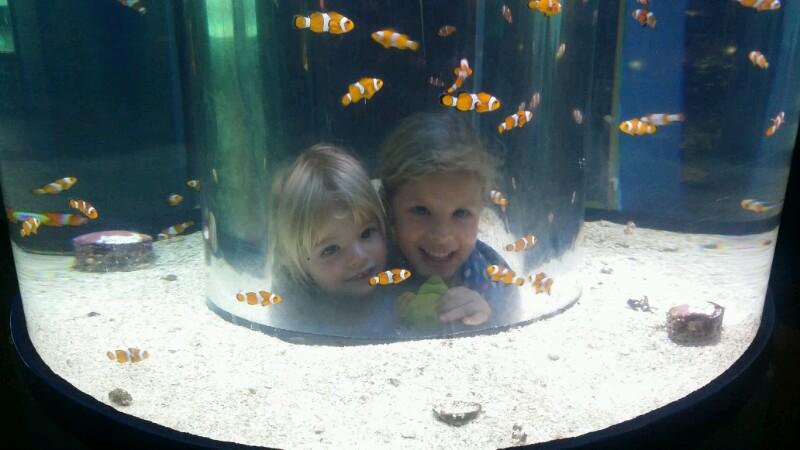Townsville-die Kinderstadt