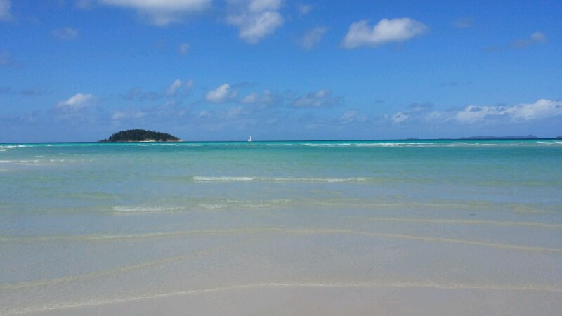 Airlie Beach: Palmen und Sonne, ein Regentag und der schönste Strand der Welt