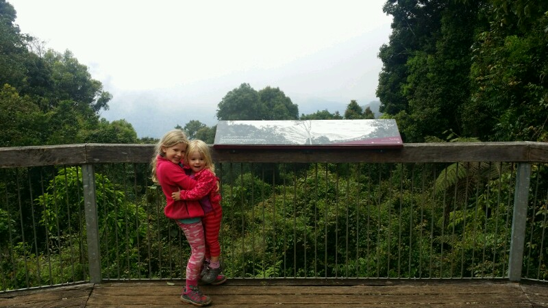 Dorrigo National Park: Regendusche im Regenwald